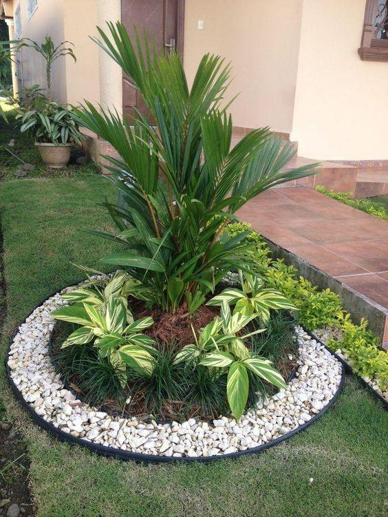 Jardines clásicos con palmas