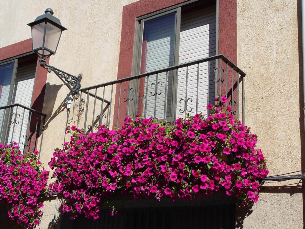 Como decorar tu casa con flores para exterior
