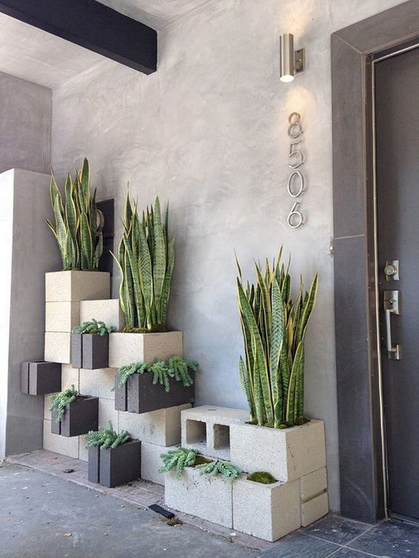 Como decorar tu casa con plantas de exterior