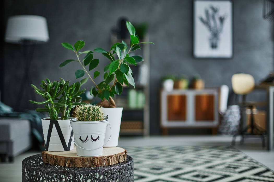 Decoracion de interiores con plantas artificiales