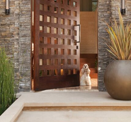Puertas de ingreso principal modernas